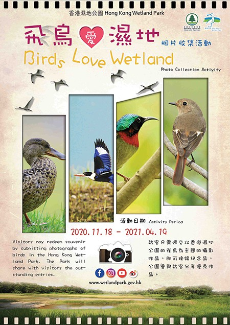 「飛鳥愛濕地」相片收集活動
