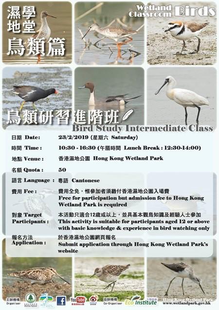 濕地學堂 ─ 鳥類篇(第2課)