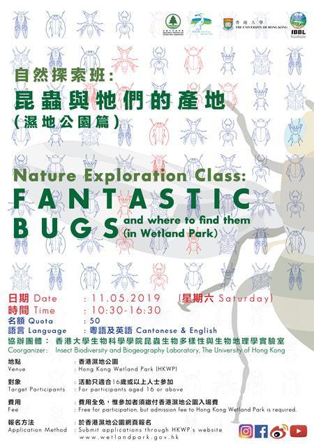 自然探索班 - 昆蟲與牠們的產地(濕地公園篇)
